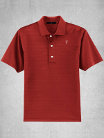 Shadow Stripe Interlock Polo